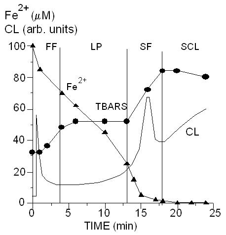 Кинетика окисления ионов