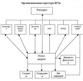 Структура отдела кадров схема фото 828