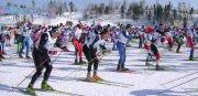 Результаты зимнего троеборья и другие новости студенческого спорта 4 недели 2018